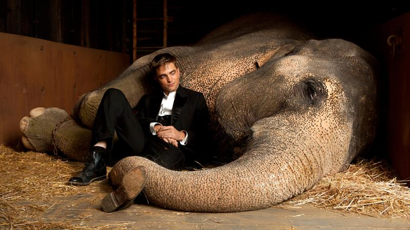 water-for-elephants-broadway-musical