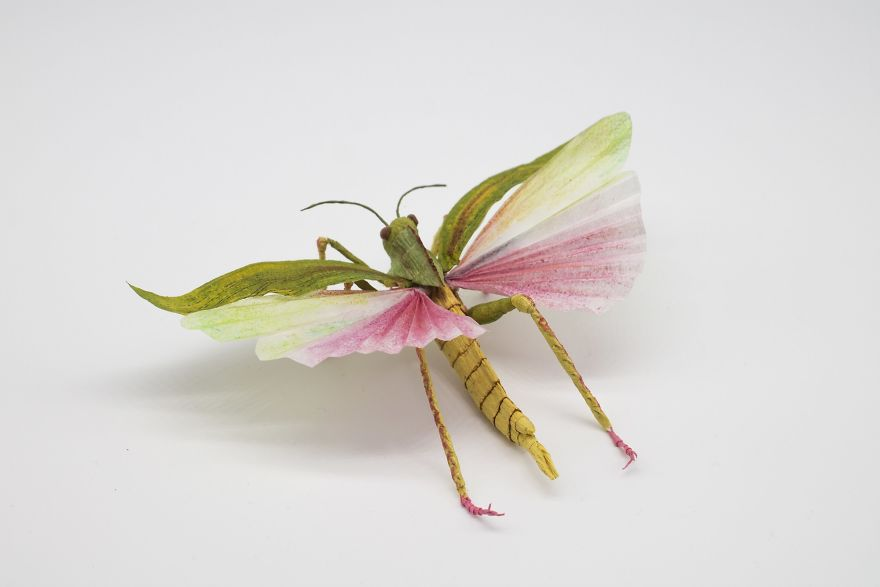 I-create-life-like-animals-out-of-paper-5d25b5dbe7bb6__880