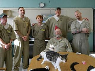 Rescue-cats-transform-inmates-lives-at-prison-in-Indiana_TotallyVeganBuzz_3-tile