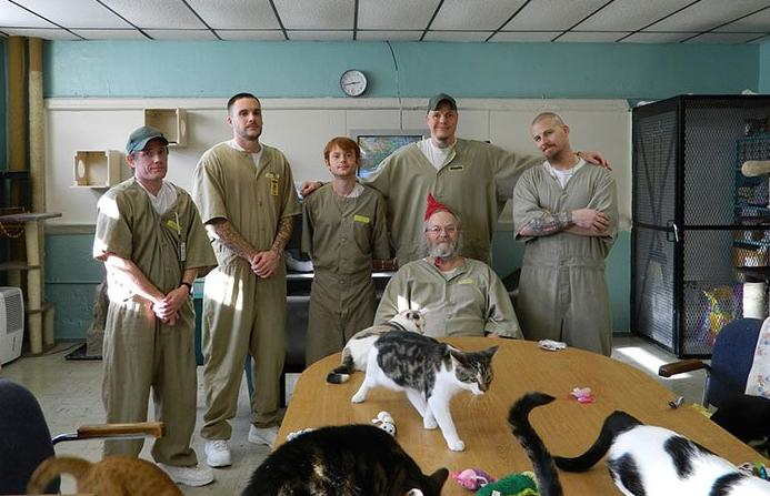Rescue-cats-transform-inmates-lives-at-prison-in-Indiana_TotallyVeganBuzz_3