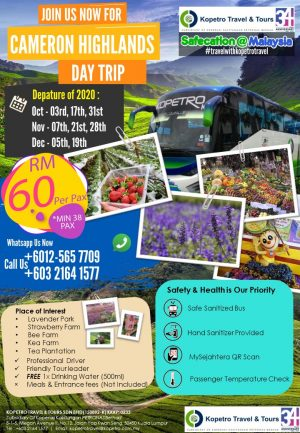 Cameron Highlands by Coach
